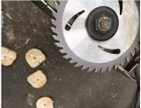 "la circular de acero de la lámina/Tct del carburo de tungsteno de 4 "" X30t vio la lámina para el corte de madera"