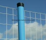 Ячеистая сеть провода утюга Europ Загородк-Голландии сваренная Mesh/PVC
