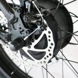 20inch 뚱뚱한 타이어를 가진 전기 접히는 눈 자전거