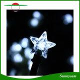 La chaîne de caractères solaire de 30 de DEL guirlandes des vacances DEL allume la lampe actionnée solaire de décoration de pelouse et de jardin d'usager de lumières de bande de l'étoile DEL