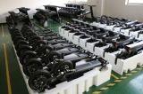 motorino urbano elettrico pieghevole di Ebike Eco della batteria di 500W 8.7+11.6ah Panasonic (FCC RoHS del CE)