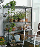 Shelving Growing da planta do cromo DIY do metal para a casa de Geen