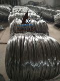 Collegare di pollo galvanizzato esagonale di Sailin