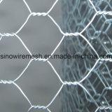 Verwendete Qualität galvanisierte sechseckigen Maschendraht, bevor sie spann