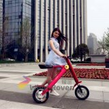 Mais recentes Wind Rover Foldable Electric Bicycle Parts Motocicleta elétrica