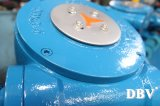 Dbv Wcb는 벨브 나비 플랜지를 붙였다