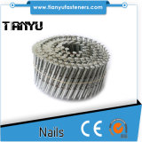 15 grados de acero inoxidable 304/316 Anillo / Tornillo Bobina Nails
