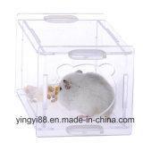 Le lapin acrylique de qualité superbe met en cage le constructeur de Shenzhen