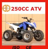 Modelo novo Updated 250cc ATV manual