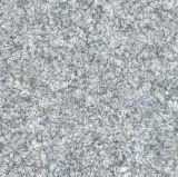 Material de construcción 800*800m m, azulejo de suelo Polished por completo esmaltado de la porcelana, azulejo de suelo de cerámica de la copia de mármol