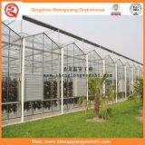 꽃을%s 농업 또는 상업적인 PC 장 정원 온실