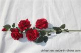 Reale Noten-künstliche Blumen rote Rose für Verbindungs-Dekoration