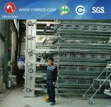 Полные наборы оборудования сарая слоя с всем вспомогательным оборудованием включая стойки
