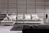 حديثة يعيش غرفة أثاث لازم جلد أريكة ([أول-إكس8060ب])