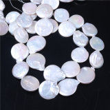 Big Coin Round Natural Freshwater Pearl Loose Beads Strand