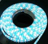 striscia dell'indicatore luminoso di colore LED di 84LEDs AC110V RGBW/Ww