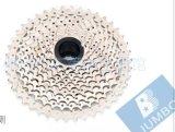modèle de couleur de /White de noir de cassette de vélo de montagne 11-40/42t Csms3