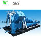 Tipo compressor do veículo do biogás de Fillng do cilindro para a estação do reabastecimento do biogás