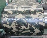 위장 PPGI 강철 코일/착색된 강철 패턴 PPGI