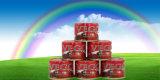 Van Certificatie halal Uitstekende kwaliteit met Goedkope Prijs Ingeblikte Tomatenpuree