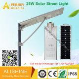 25W IP68 imprägniern im Freien integriertes Solar-LED-Straßen-Garten-Licht