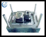 De plastic Vorm van de Injectie voor het Materiële Deel van pvc