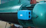 CD/MD elektrische Hebevorrichtung für einzelnen Träger Crane/Ce bescheinigt