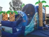 Animoso inflable del patio inflable animoso inflable de Moana con la diapositiva