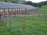 熱い販売および最もよい価格の牧草地の塀機械