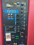 Feiyang/Temeisheng de Draagbare Grote Navulbare Houten Spreker van de Macht Bluetooth--Gd15-02