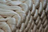 Filato di seta filato gelso grezzo di 100%