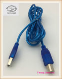 Usb-Kabel, RCA-Kabel, Handels Kabel, USB-Typ Kabel ein Stecker Stecker zum USB-B