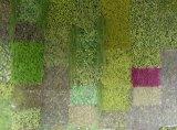 3차원 인공적인 플랜트 벽
