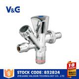 Válvula de ângulo de latão de ferro fundido 5k Screw Down Check (VG-E12121)