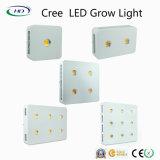 Las series LED del CREE crecen ligeras con la lente (200W-1800W)