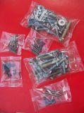 Zählende und Verpackungsmaschine Schraube