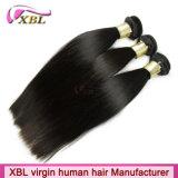 人間の毛髪の会社100のバージンの編む毛