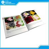Impressão barata do livro da foto da cor cheia