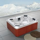 Neues Design 220V 4 Person SS Jet Jacuzzi Outdoor SPA