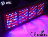 Le large spectre en aluminium DEL du boîtier 1200W élèvent des lumières