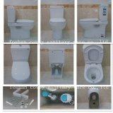 Toilette de partie de remorquage avec la norme de l'Australien/American/EU (CVT6002)
