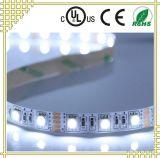 UL 세륨 RoHS 증명서를 가진 RGBW 유연한 LED 지구