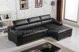Migliori stili della mobilia in sofà contemporaneo dell'Australia della base di sofà