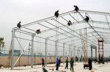 Todo el taller de la estructura de acero del marco de acero