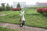 Scooter électrique pliable mignon de Populer mini sans pédales