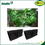 Piantatrice verticale esterna del giardino della parete di Onlylife