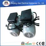 단일 위상 감응작용 AC 전동기