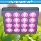 F16 600W LED Grow Light del NOVA per Indoor Plants