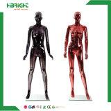 Mannequin bon marché de femelle de corps de bonne qualité de fibre de verre plein