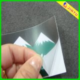 Etiqueta autoadhesiva impermeable cortada con tintas del vinilo de la etiqueta engomada adhesiva del coche